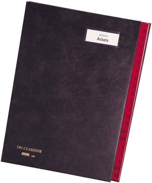 emey Pultordner 750, 20 Fächer, mit Taben von A - Z