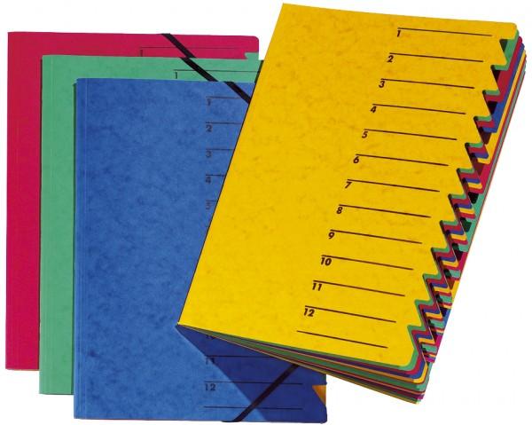 blau Karton 12 F/ächer DIN A4 PAGNA Ordnungsmappe EASY