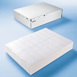 HERMA Folien-Etiketten DATAPRINT, 105 x 148,5 mm, weiß