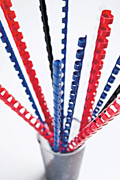 21 Ringe oval Plastikbinderücken blau 12,5 mm A4 US-Teilung